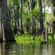 Atchafalaya Basin Bridge - Landmarks & Historical Buildings