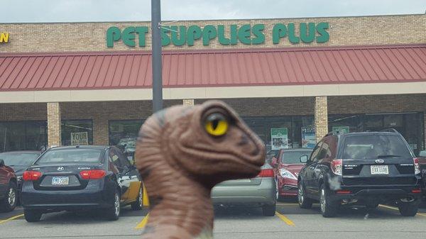 Pet Supplies Plus 7315 Mentor Ave Mentor Oh Pet Supplies Mapquest