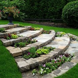 Mikes Lawn Care Service Landscaping San Antonio TX Phone
