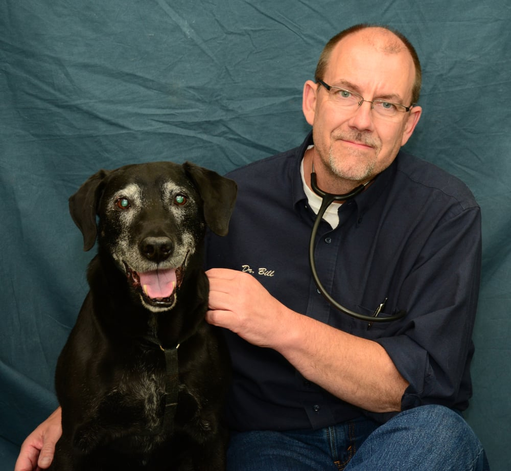 Best Friends Animal Hospital: 979 1575th St, Lincoln, IL