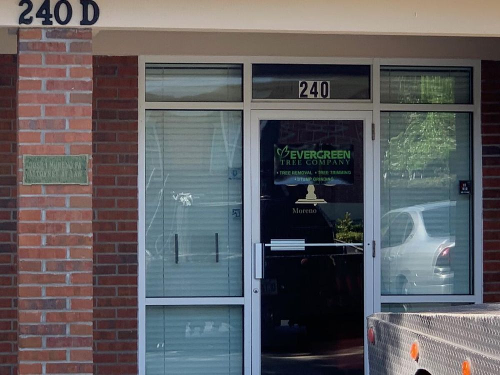 Evergreen Tree Company: Gainesville, FL