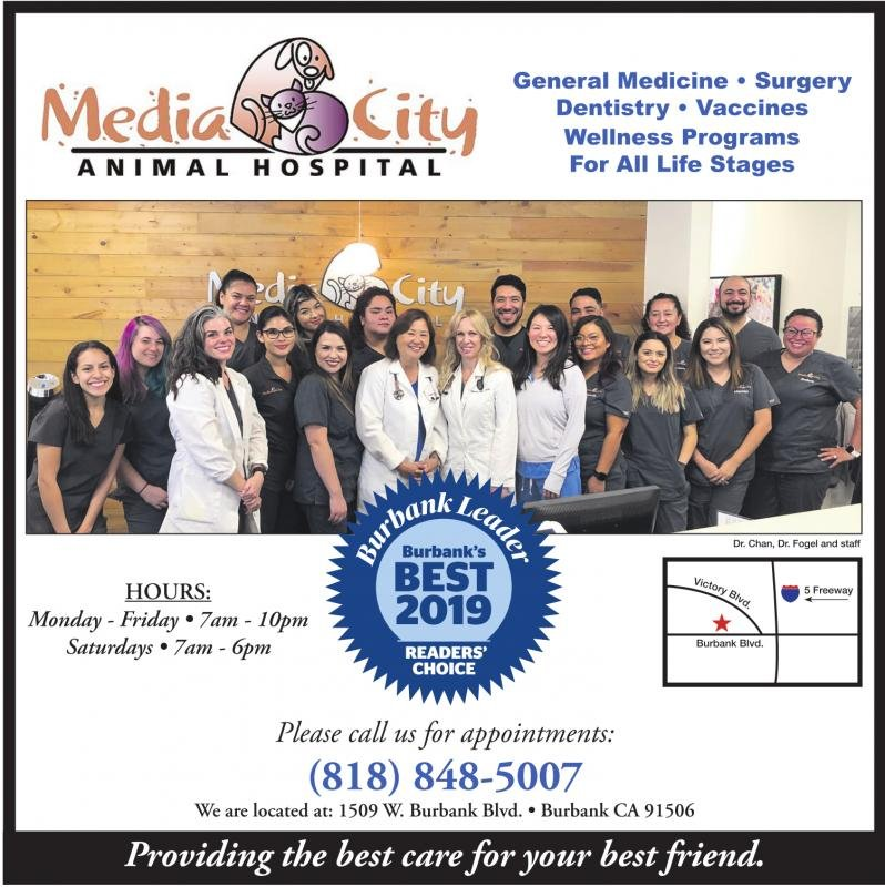 Media City Animal Hospital