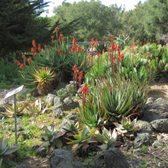 Exceptionnel Photo Of San Luis Obispo Botanical Garden   San Luis Obispo, CA, United  States