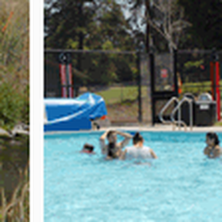Blackberry farm pool and picnic grounds parks yelp - Blackberry farm cupertino swimming pool ...