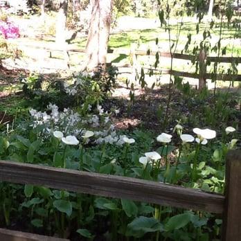 Jensen Botanical Gardens 51 Photos 19 Reviews Botanical Gardens 8520 Fair Oaks Blvd