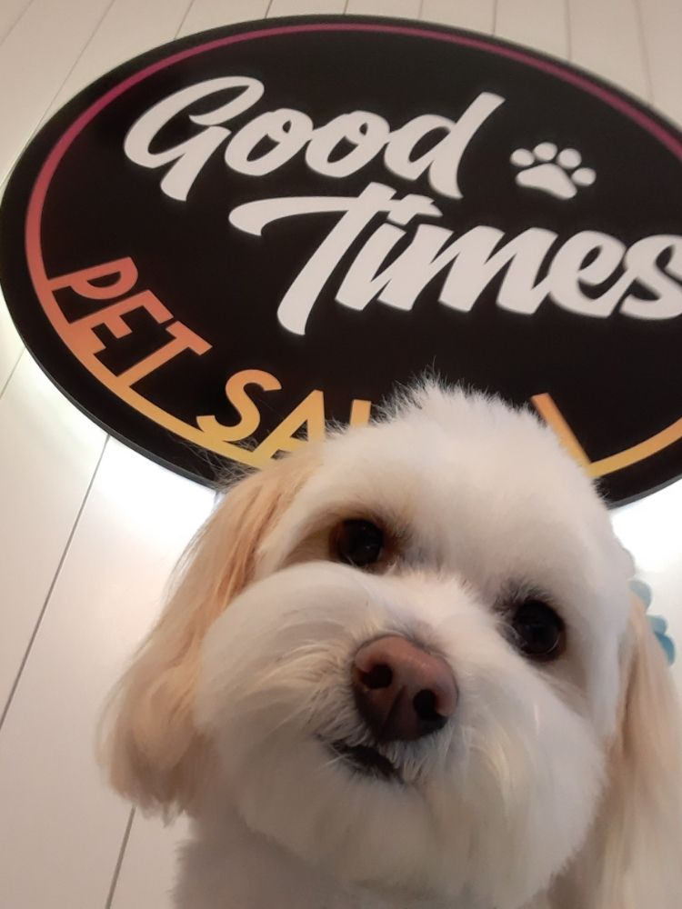 Good Times Pet Salon