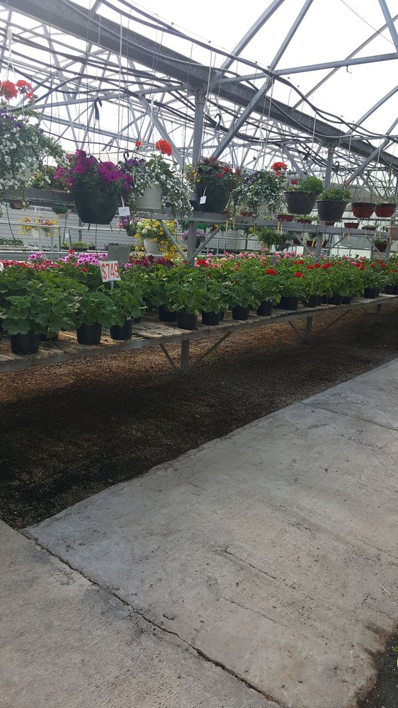 Fairfax Greenhouse & Landscape: 555 W Southview Rd, Fairfax, IA