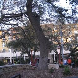 Joe dimaggio s italian chophouse lukket 51 anmeldelser for 11410 century oaks terrace austin tx