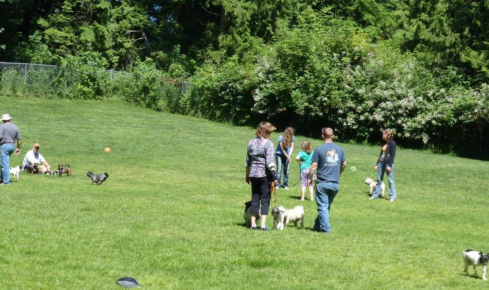 camano canine resort   13 photos   pet groomers   1395 shuksan dr