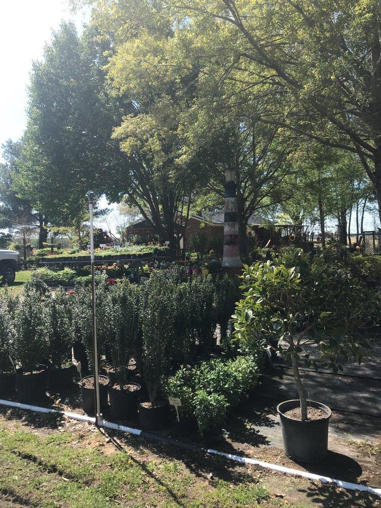Friendly Nursery: 4496 Old Creek Rd, Greenville, NC