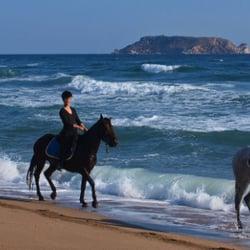 Photo Of Horseback Riding On The Beach San Go Ca United