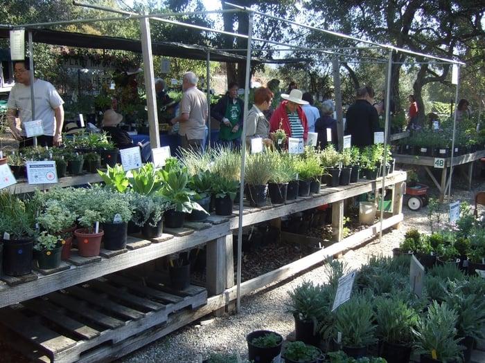 Photos For Descanso Gardens Yelp
