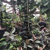 Photo Of San Gabriel Nursery Florist Ca United States