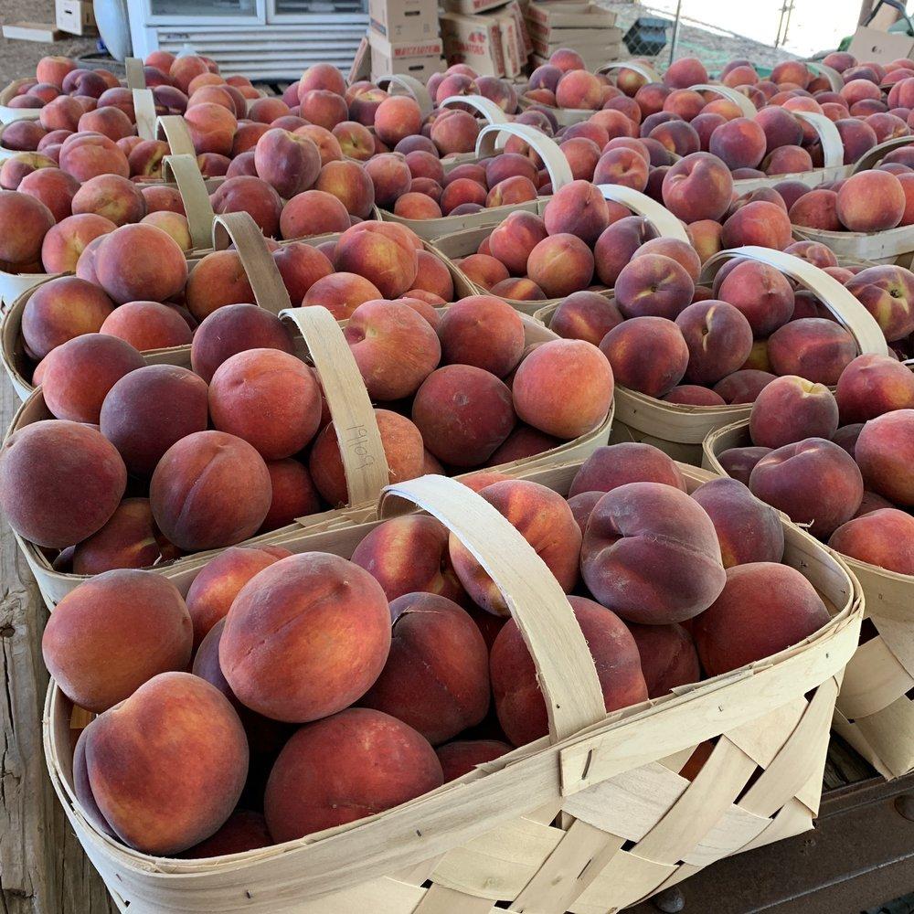 William L Brown Farms: 4334 Highway 49 N, Montezuma, GA
