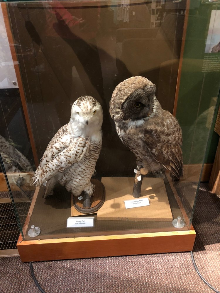 Audubon Society of Portland