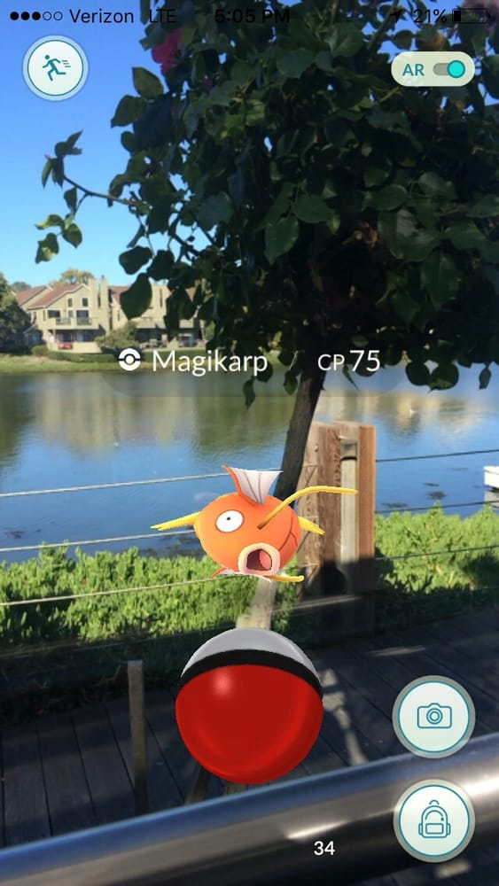 The view from our table and a magikarp appeared there is for The fish market san mateo