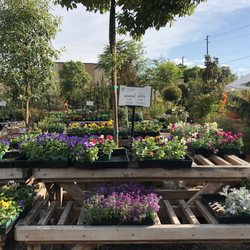 Delicieux Photo Of Glendora Gardens Nursery And Tree Farm   Glendora, CA, United  States.