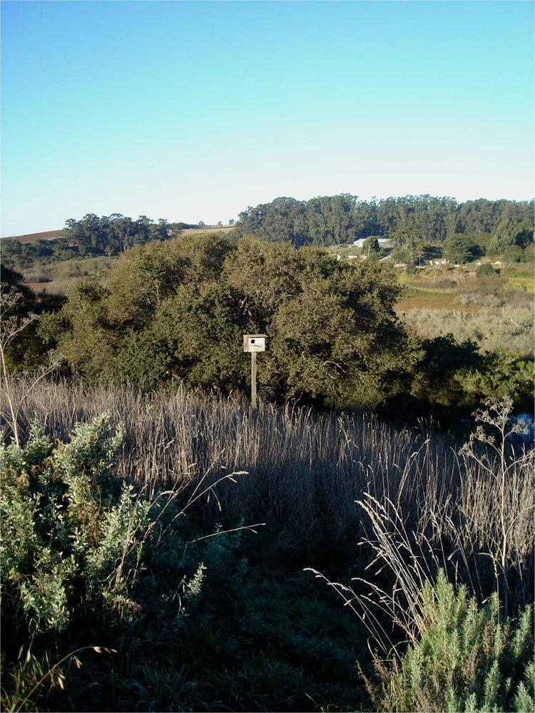 High Ground Organics: 521 Harkins Slough Rd, Watsonville, CA