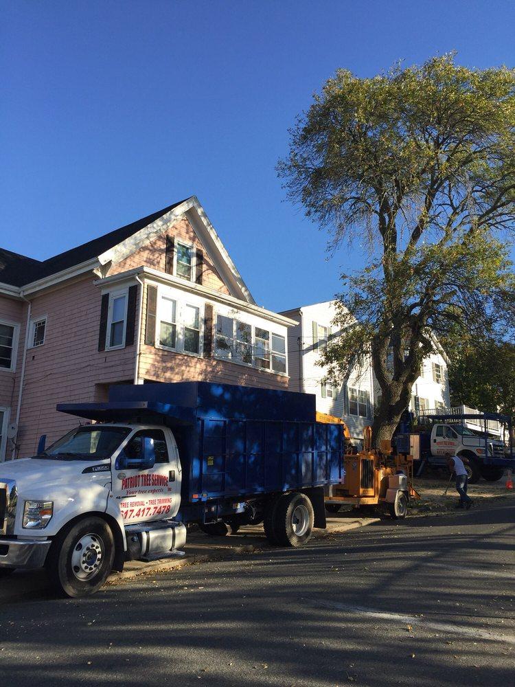 Patriot Tree Service: 96 Hampshire St, Cambridge, MA
