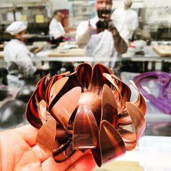 San Diego Culinary Institute - 105 fotos y 12 reseñas ...