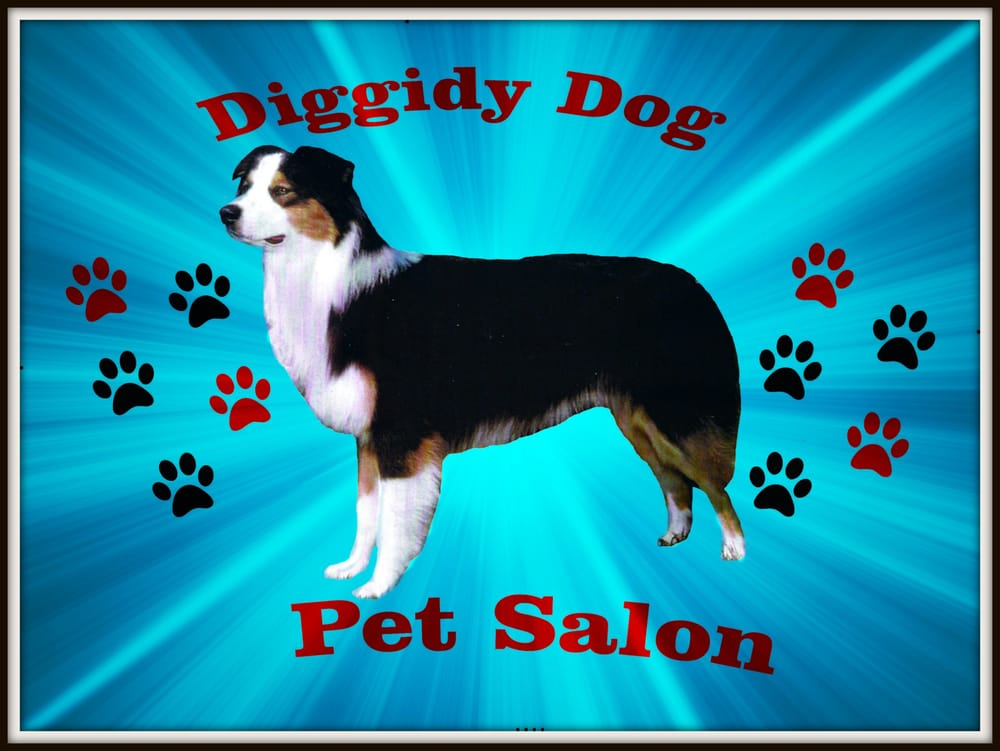 Diggidy Dog Pet Salon: 5201 S Colony Blvd, The Colony, TX