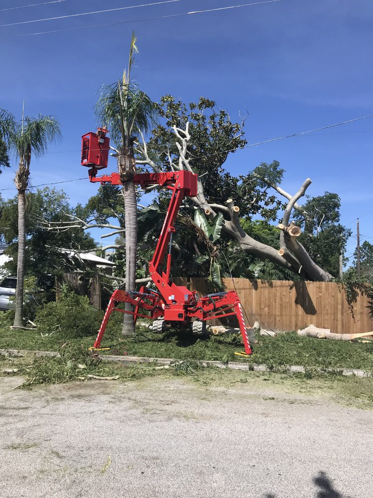On Demand Tree Service: 510 34th St S, St Petersburg, FL