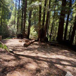 Ventana Campground - 48123 Hwy 1, Big Sur, CA - 2019 All You