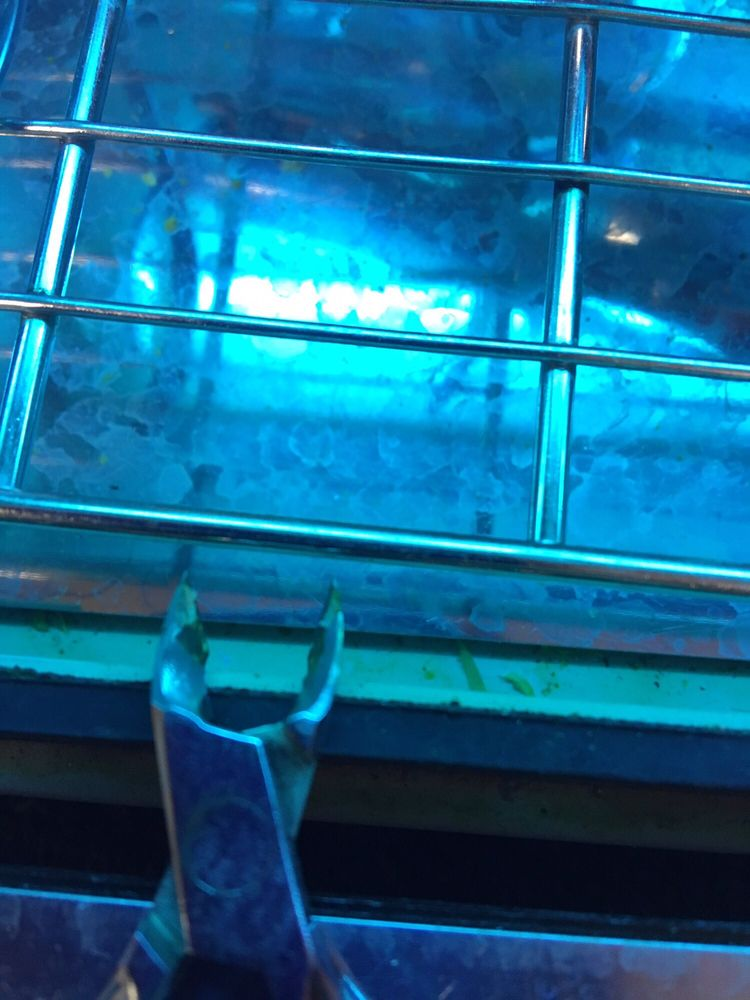 Glory Nails: 200 High Ave W, Oskaloosa, IA