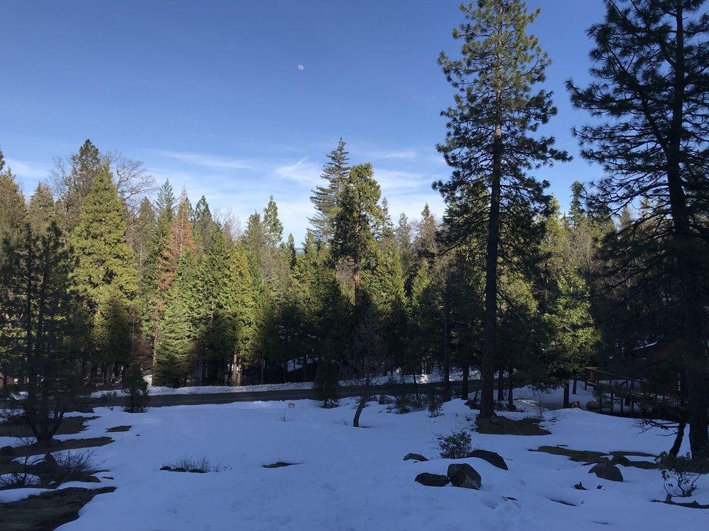 Dorrington-Stanislaus National Forest: Hwy 4, Dorrington, CA