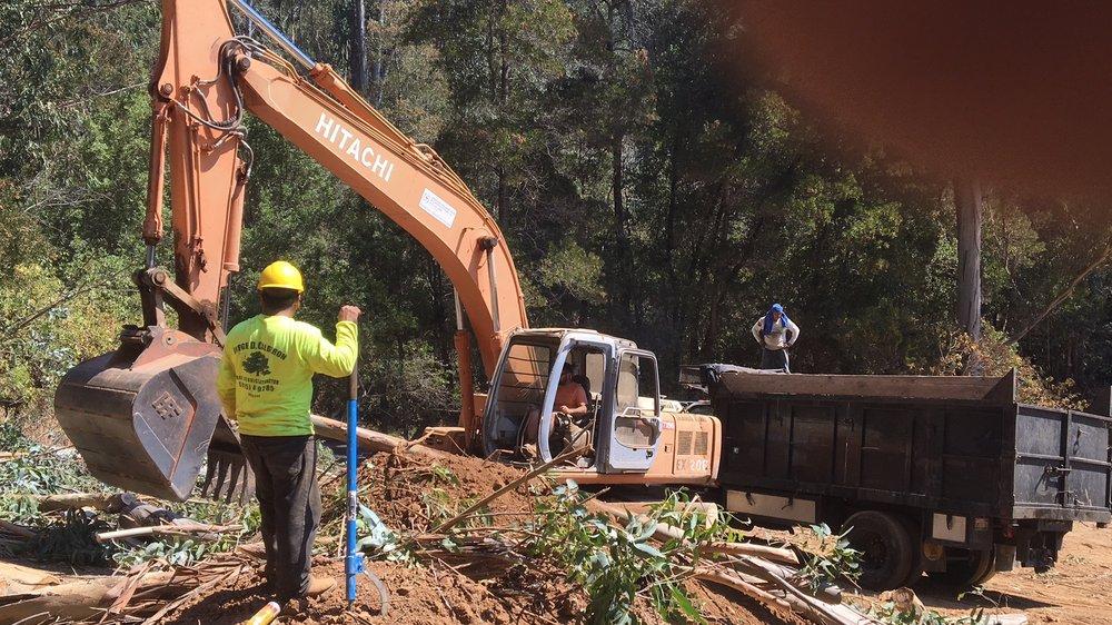Jorges Tree Service