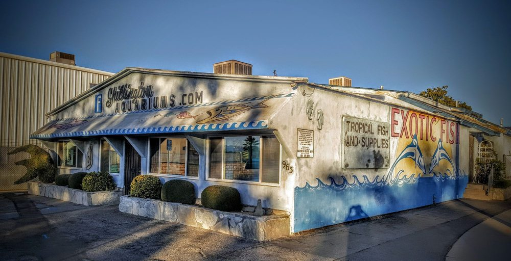 Shillington Aquariums: 965 Calimesa Blvd, Calimesa, CA