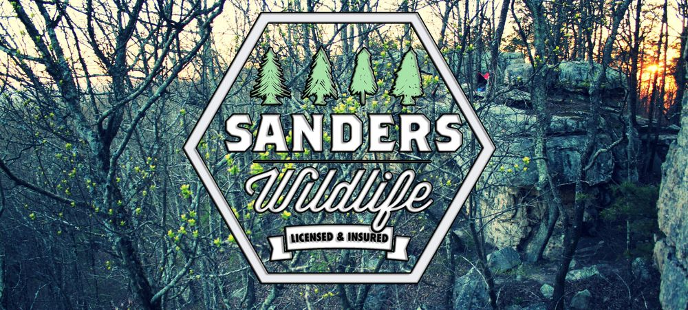 Sanders Wildlife: 308 Nicole Dr, Temple, GA
