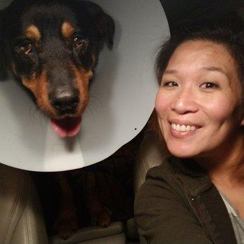 Dog Er Pet Emergency Specialty Center La Mesa Ca