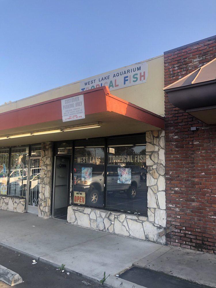 West Lake Aquarium: 710 E Whittier Blvd, La Habra, CA