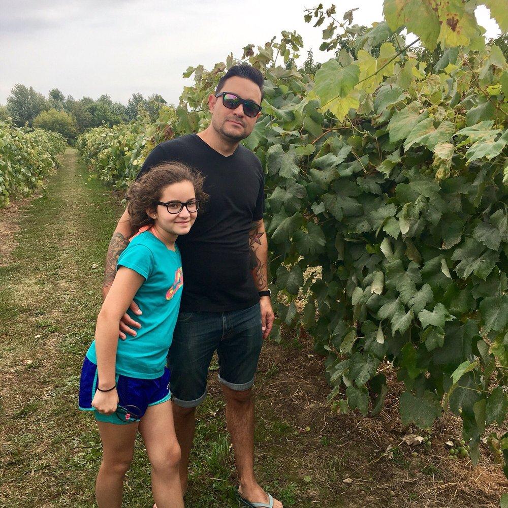 Pete's U-pick Fruit Farm: 1623 E Lemon Creek Rd, Berrien Springs, MI