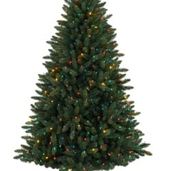 photo of christmas tree market beaverton or united states balsam spruce tree - Christmas Tree Market