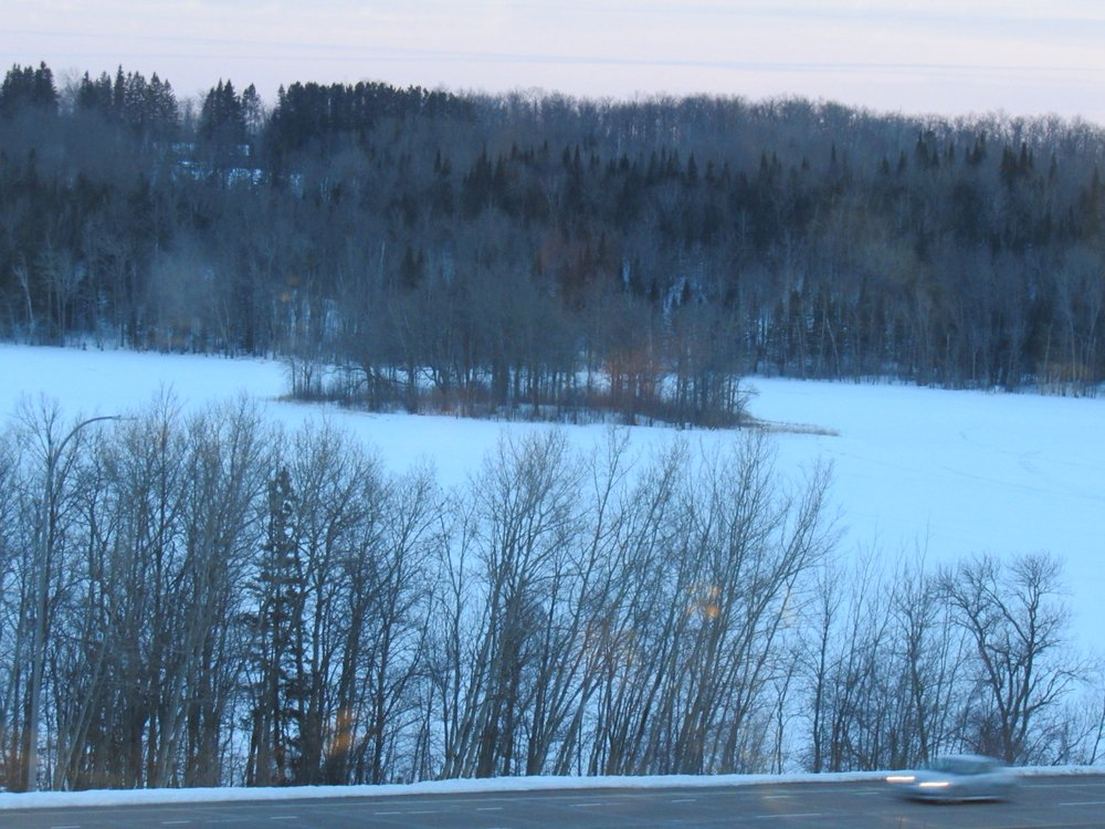 3bd4faf21b7 View of Bear Island Lake...appealing even though it's winter - Yelp