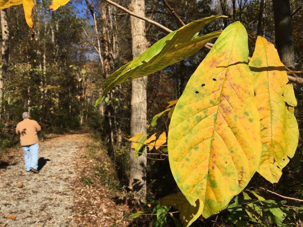 Gunpowder Creek Nature Park: 6750 Sperti Ln, Burlington, KY