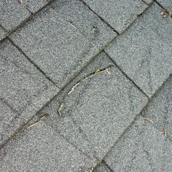 Photo Of Tillys Roofing Repair   Lake Oswego, OR, United States. If You