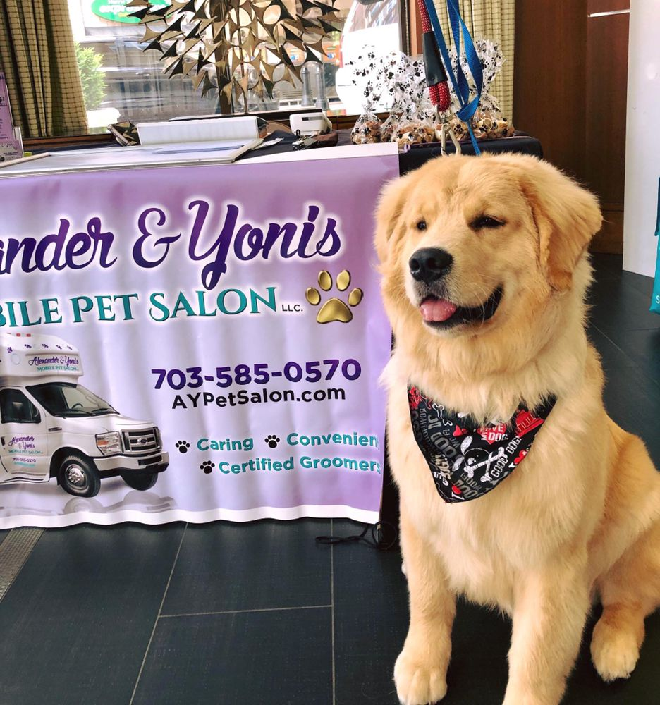 Alexander & Yonis Mobile Pet Salon