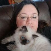 Furry Dream - 19 Photos - Pet Adoption - 141 Bay 35th St
