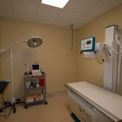 Oak Forest Veterinary Hospital 60 Photos 49 Reviews Veterinarians 2120 W 34th St Oak