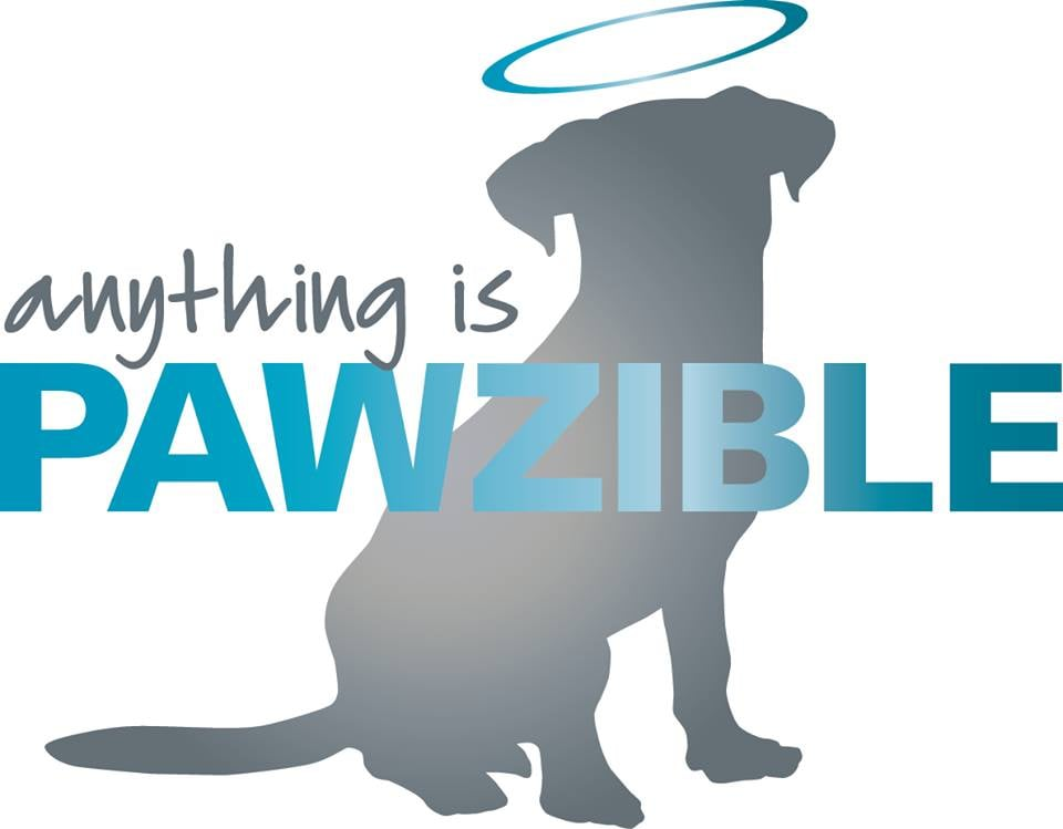 Anything Is Pawzible