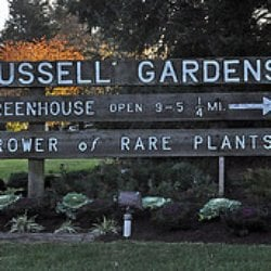 Russell Gardens Wholesale: 600 New Rd, Churchville, PA