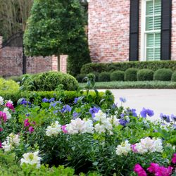 moss landscaping 16 photos tree services 4130 lang rd