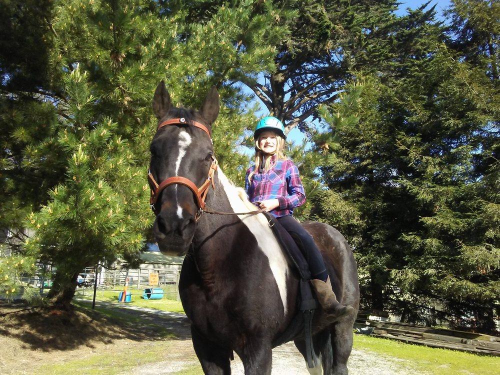 Double J Ranch: 1208 Alamo St, Montara, CA