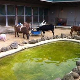 Photos for Laguna Honda Hospital & Rehabilitation Center - Yelp