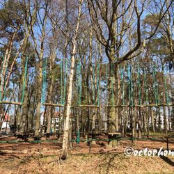 kletterwald freizeitpark ostseeallee 25 k hlungsborn mecklenburg vorpommern. Black Bedroom Furniture Sets. Home Design Ideas