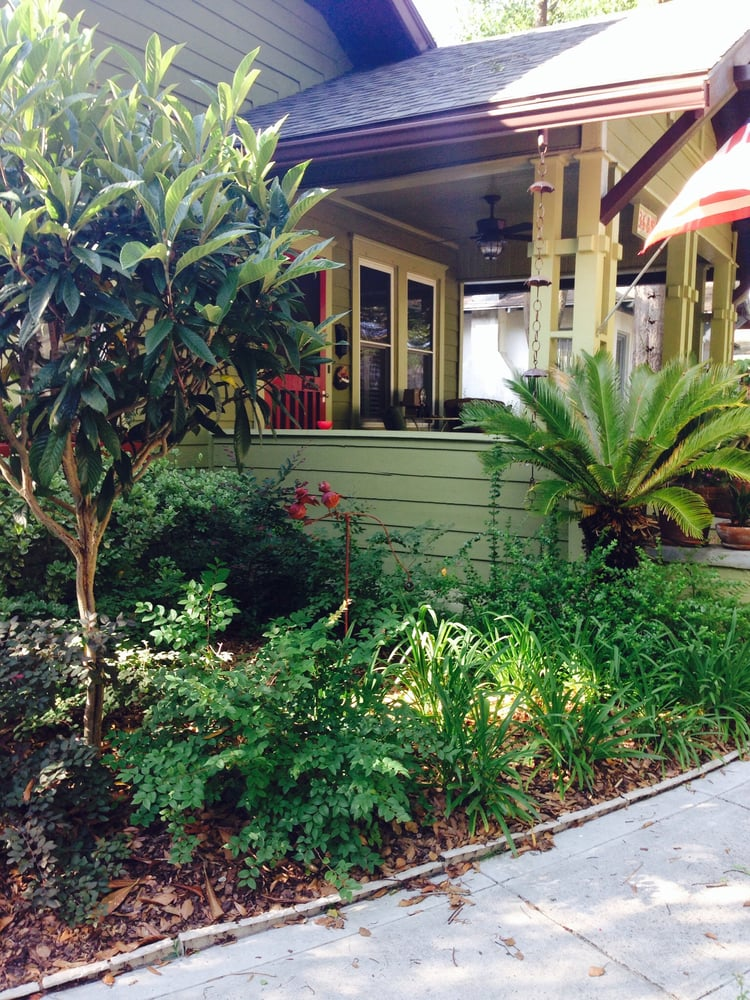 landscaping using all low water florida native plants complete in avondale   florida