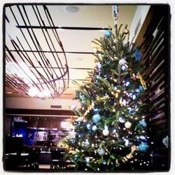 Almost Heavenly Christmas Trees - Christmas Trees - 2911 Cameron ...